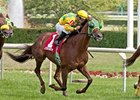 Suntracer takes on 8 in the Kentucky Turf Cup Stakes.