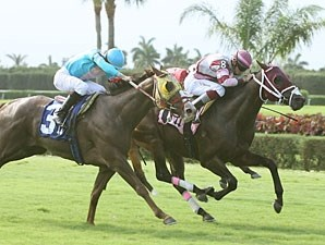 Bim Bam wins the 2010 Lord Juban Stakes.