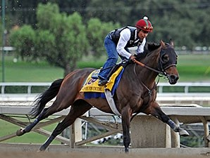 Game On Dude preps for the Breeders' Cup.