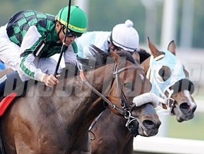 El Brujo wins the 2009 Kentucky Cup Sprint.