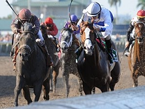 Dialed In (outside) wins the 2011 Florida Derby over Shackleford.