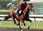 Union Rags worked four furlongs in :47 2/5 at Keeneland on April 20.