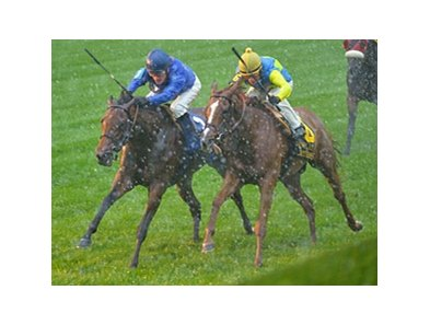 "Better Lucky (left) outfights Dayatthespa and the rain to win the First Lady Stakes.<br><a target=""blank"" href=""http://photos.bloodhorse.com/AtTheRaces-1/at-the-races-2013/27257665_QgCqdh#!i=2812540215&k=stzX78n"">Order This Photo</a>"