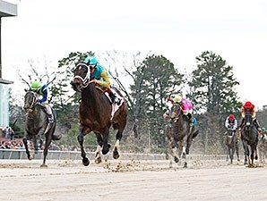 Brewing wins the 2014 Gazebo Stakes.