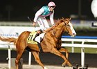 Cityscape and James Doyle dominate the Dubai Duty Free at Meydan.