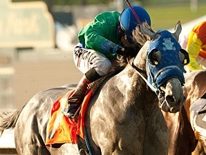 Creative Cause Works 5 Furlongs at Hollywood