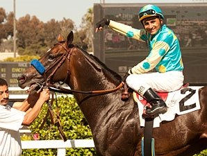 Paynter Completes Comeback With Sizzling Win