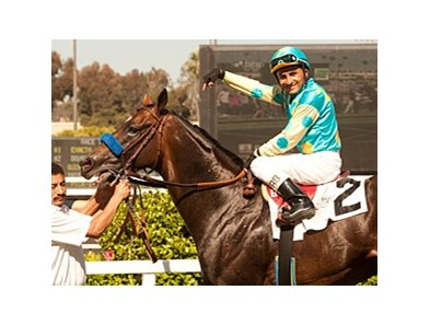 Paynter back in the Winner's Circle