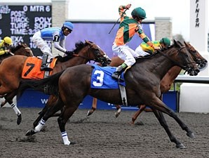 Biofuel wins the 2010 Mahone Stakes.