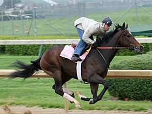 Rachel Alexandra works at Churchill Downs, April 16 2009.