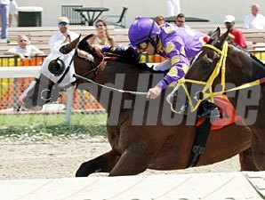 Fort Loudon wins the 2012 Carry Back.