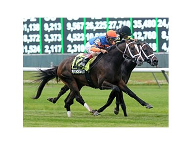 "Notacatbutallama takes control in the Hill Prince Stakes.<br><a target=""blank"" href=""http://photos.bloodhorse.com/AtTheRaces-1/at-the-races-2013/27257665_QgCqdh#!i=2576902484&k=5x8zjq4"">Order This Photo</a>"