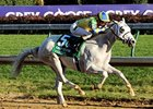 Hansen in the Breeders' Cup Juvenile.