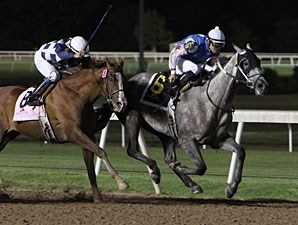 Don Dulce wins the 2012 Edward J. DeBartolo Memorial.