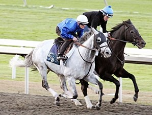 Silver Timber works at Keeneland on October 23, 2010.