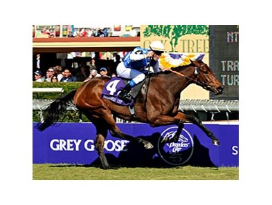 "Goldikova is favored to repeat in the mile.<br><a target=""blank"" href=""http://www.bloodhorse.com/horse-racing/photo-store?ref=http%3A%2F%2Fpictopia.com%2Fperl%2Fgal%3Fprovider_id%3D368%26ptp_photo_id%3D6457157%26ref%3Dstory"">Order This Photo</a>"