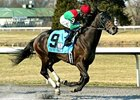 Crop Report Takes Rushaway for Race Sponsor