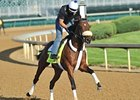 Java's War