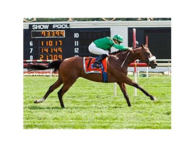 Bayrir flies home to win the Secretariat Stakes (gr. IT) at Arlington Park.