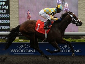 Uncaptured wins the 2012 Vandal Stakes.