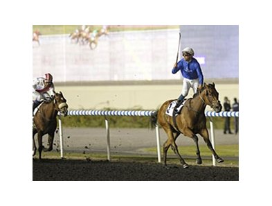 Falls of Lora won the UAE Oaks by 2 3/4 lengths on February 23.