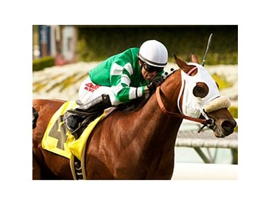 Chips All In won the Pasadena on March 23 at Santa Anita.