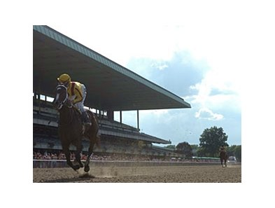 "Rachel Alexandra is all alone at the finish of the Mother Goose.<br><a target=""blank"" href=""http://www.bloodhorse.com/horse-racing/photo-store?ref=http%3A%2F%2Fpictopia.com%2Fperl%2Fgal%3Fprovider_id%3D368%26ptp_photo_id%3D8279100%26ref%3Dstory"">Order This Photo</a>"