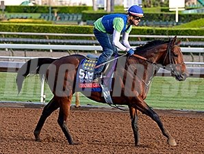 Secret Circle preps for the Breeders' Cup.