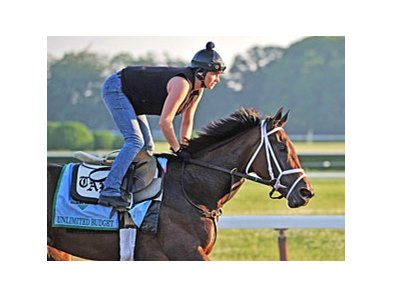 Unlimited Budget