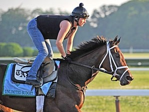 Unlimited Budget - Belmont Park, June 1, 2013.