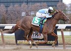 "Agave Kiss will try to stay undefeated in the Cicada at Aqueduct.<br><a target=""blank"" href=""http://www.bloodhorse.com/horse-racing/photo-store?ref=http%3A%2F%2Fpictopia.com%2Fperl%2Fgal%3Fprovider_id%3D368%26ptp_photo_id%3D9799138%26ref%3Dstory"">Order This Photo</a>"