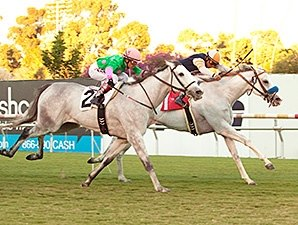 Egg Drop Wins Matriarch Thriller for Mitchell