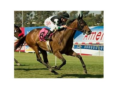 Valbenny will try to end an eight-race losing streak in the San Gorgonio Handicap.