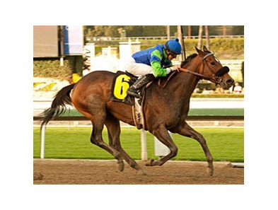 Include Me Out wins the La Canada Stakes.