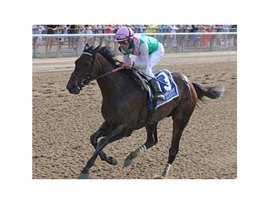 Close Hatches
