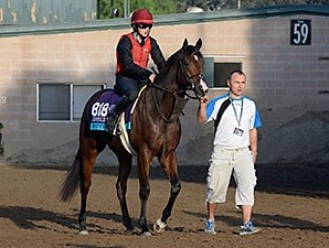 War Envoy - Breeders' Cup 2014