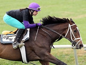 Summer of Fun - Keeneland Work, October 26, 2012.