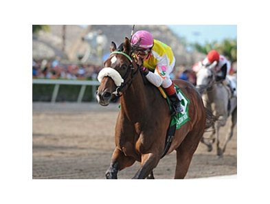 Grace Hall won the Gulfstream Oaks earlier this year.