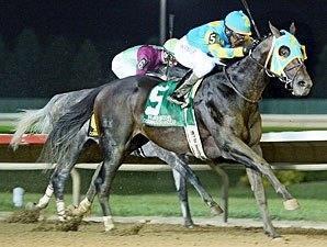 Prayer For Relief Answers All In Cornhusker Bloodhorse
