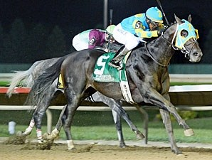 Prayer for Relief wins the 2013 Cornhusker.
