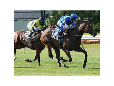 "Hibaayeb powers to victory in the Sheepshead Bay.<br><a target=""blank"" href=""http://www.bloodhorse.com/horse-racing/photo-store?ref=http%3A%2F%2Fpictopia.com%2Fperl%2Fgal%3Fprovider_id%3D368%26ptp_photo_id%3D9541540%26ref%3Dstory"">Order This Photo</a>"