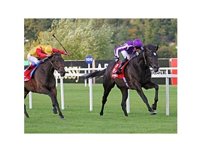 "So You Think outfinishes Snow Fairy to win the Irish Champion Stakes.<br><a target=""blank"" href=""http://www.bloodhorse.com/horse-racing/photo-store?ref=http%3A%2F%2Fpictopia.com%2Fperl%2Fgal%3Fprovider_id%3D368%26ptp_photo_id%3D9654900%26ref%3Dstory"">Order This Photo</a>"