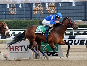 Saginaw wins the 2012 Fourstars Allstar Stakes.
