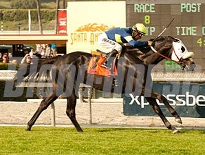 Bright Thought wins the 2013 San Luis Rey.