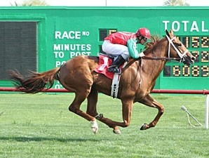 Red Zeus wins the 2013 Arizona Stallion Stakes.