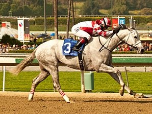 Joyful Victory Retired, to be Sold at F-T