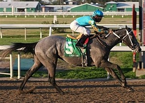 Z Fortune pulls away to score his first graded stakes victory in the LeComte.