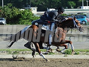 Princess of Sylmar at Belmont Park June 1.