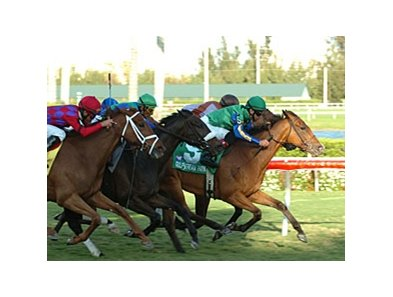 "Mauralakana emerges from the pack to take The Very One.<br><a target=""blank"" href=""http://www.bloodhorse.com/horse-racing/photo-store?ref=http%3A%2F%2Fpictopia.com%2Fperl%2Fgal%3Fprovider_id%3D368%26ptp_photo_id%3D3788807%26ref%3Dstory"">Order This Photo</a>"