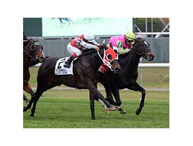 "Effie Trinket holds off Sally's Dream to win the Ticonderoga Stakes.<br><a target=""blank"" href=""http://photos.bloodhorse.com/AtTheRaces-1/at-the-races-2013/27257665_QgCqdh#!i=2844397989&k=gt4fpST"">Order This Photo</a>"